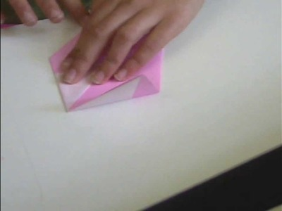 How to make a Parakeet Origami