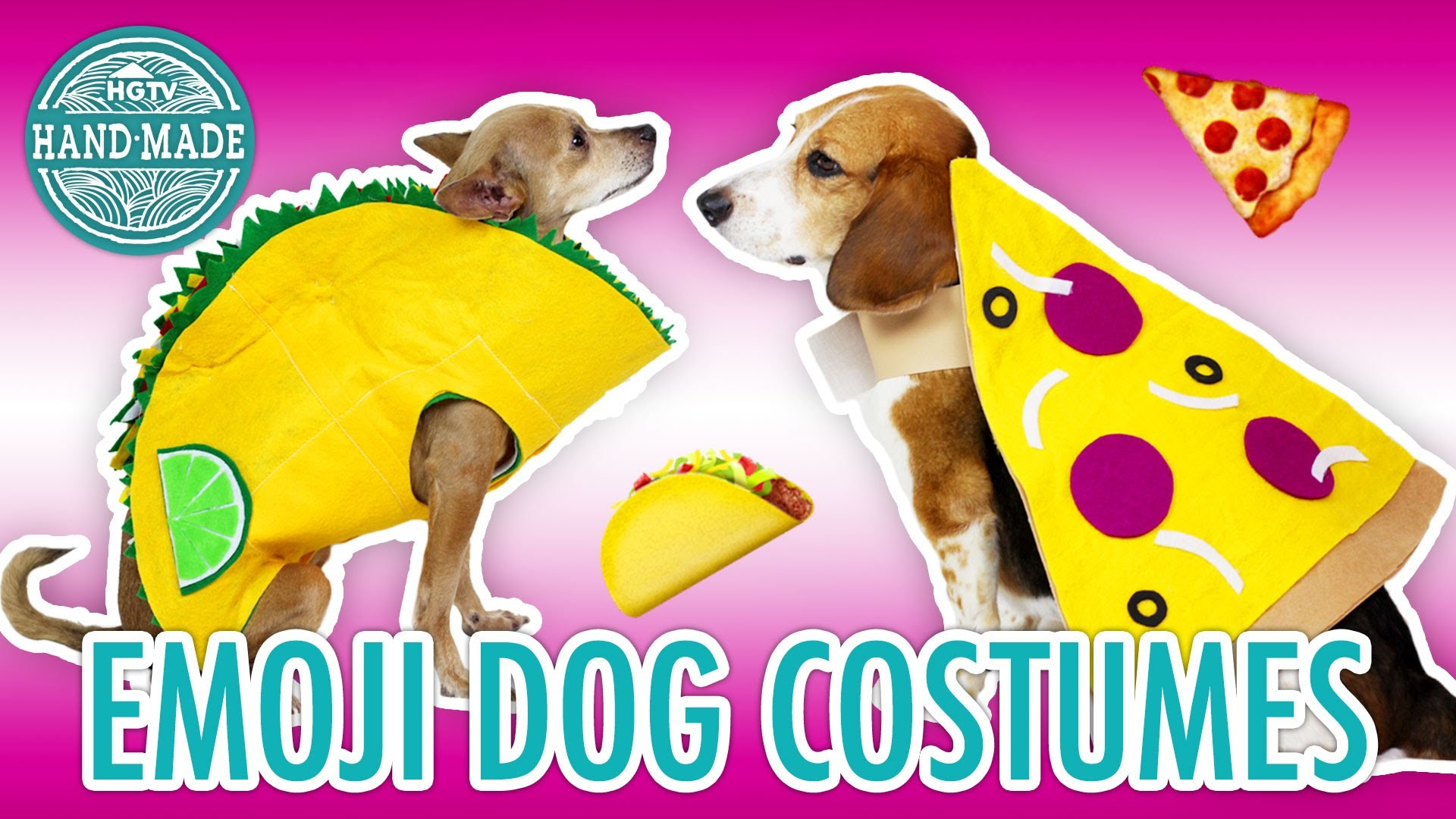 Last Minute DIY Emoji Dog Costumes - HGTV Handmade