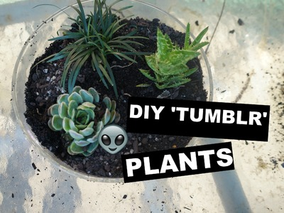 ☼☯☾ d.i.y 'tumblr' plant pot ☽☯☼
