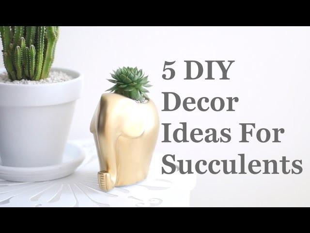 5 DIY Decor Ideas For Succulents