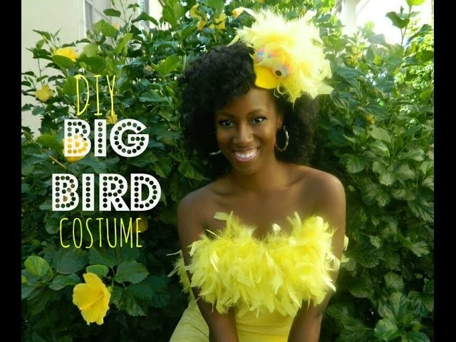 DIY Big Bird Costume