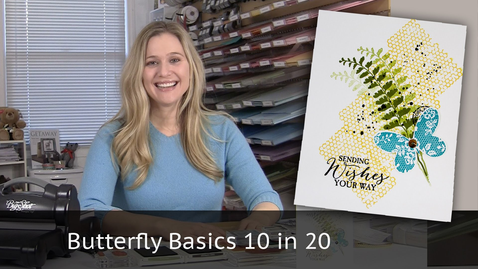 Butterfly Basics 10 cards in 20 minutes
