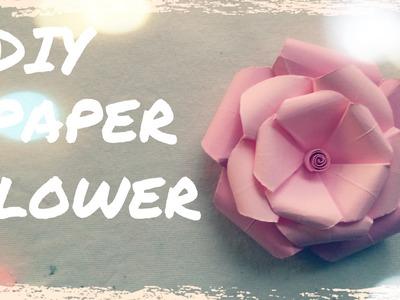 DIY Paper Flower Wedding - Diy Wedding Decorations