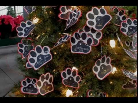 ANGEL PAWS' LIGHT UP A PAW PRINT IN HEAVEN MEMORIAL CHRISTMAS TREE