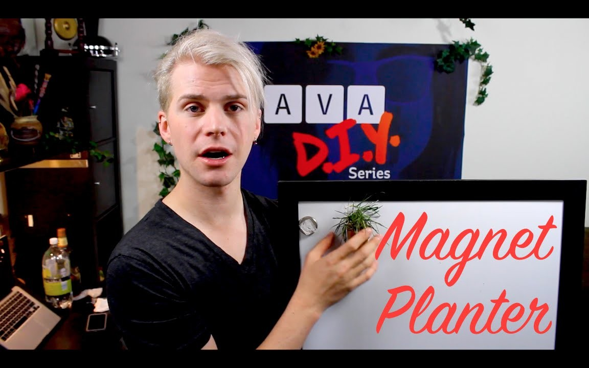 AVA DIY Magnet Planter: Crafting With Cocktails (3.36)