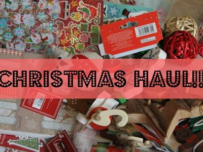 Christmas Haul?! | Craft and Pet Items!