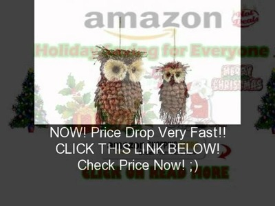 Club Pack of 12 Modern Lodge Pine Cone and Twig Owl Christmas Ornaments