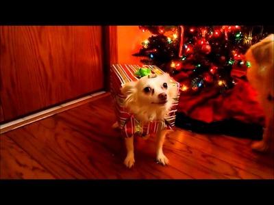 How To Make A Homemade Christmas Costume For Your Dog