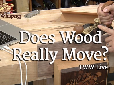 222 - TWW Live: Does Wood Really Move?