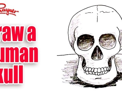 How to draw a Human Skull