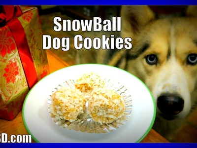 DIY SNOWBALL DOG COOKIES | Snow Dogs Snacks 40 | No Bake Dog Treats for Christmas