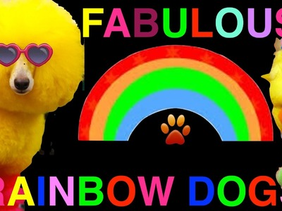 50 FABULOUS RAINBOW DOGS-Amazing Spectacular Colors- a presentation by Cooking For Dogs