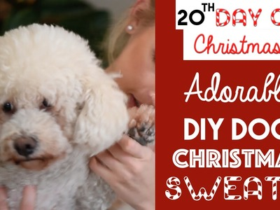 ADORABLE DIY Dog Christmas Sweater | 20th Day of Christmas 2015!