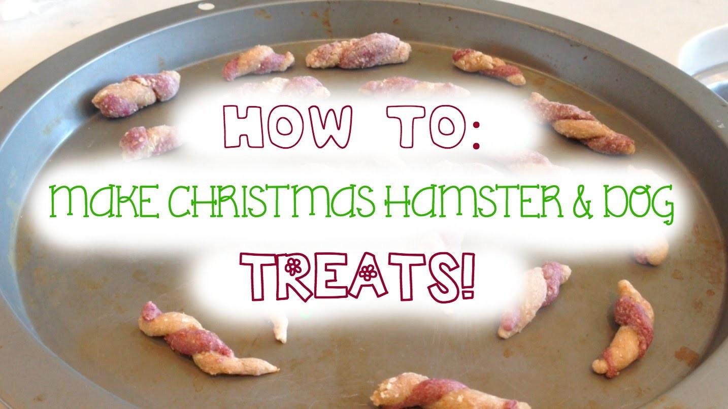 DIY Christmas Hamster & Dog Treats!
