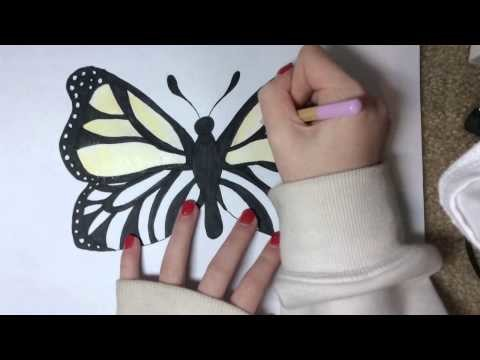 Speed drawing: rainbow monarch butterfly