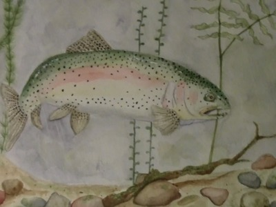 Speed painting rainbow trout