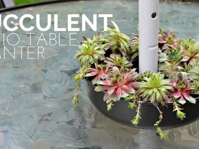 How to Make a Succulent Patio Table Planter