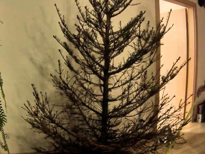 How to make your own Christmas tree