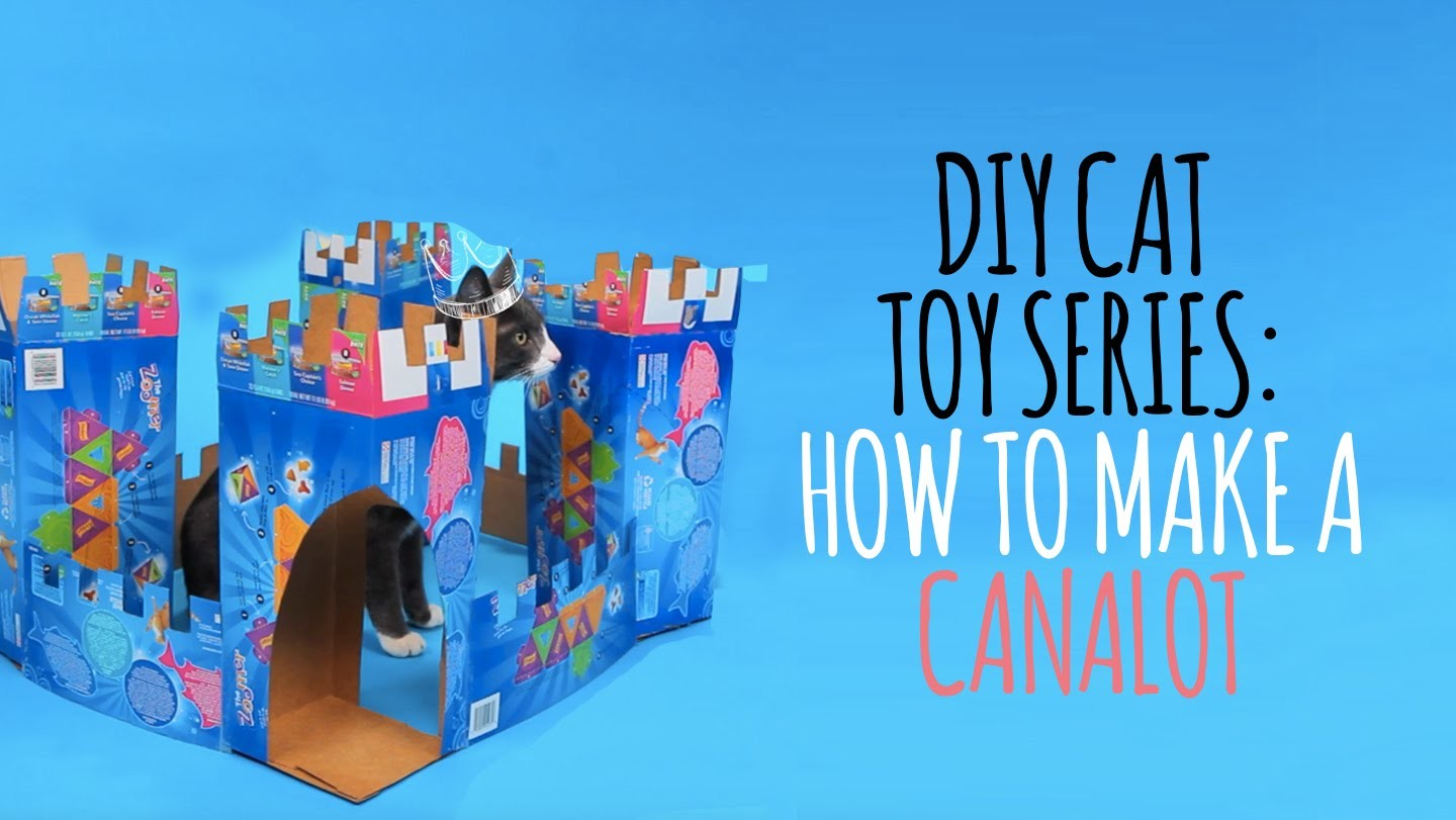DIY Cat Toys - How to Make a Canalot