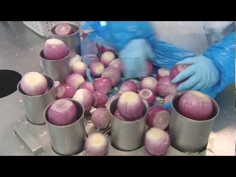 How It's Made - Onions (Gills' Onions)