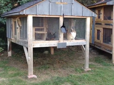 How to Build a Rabbit Hutch update