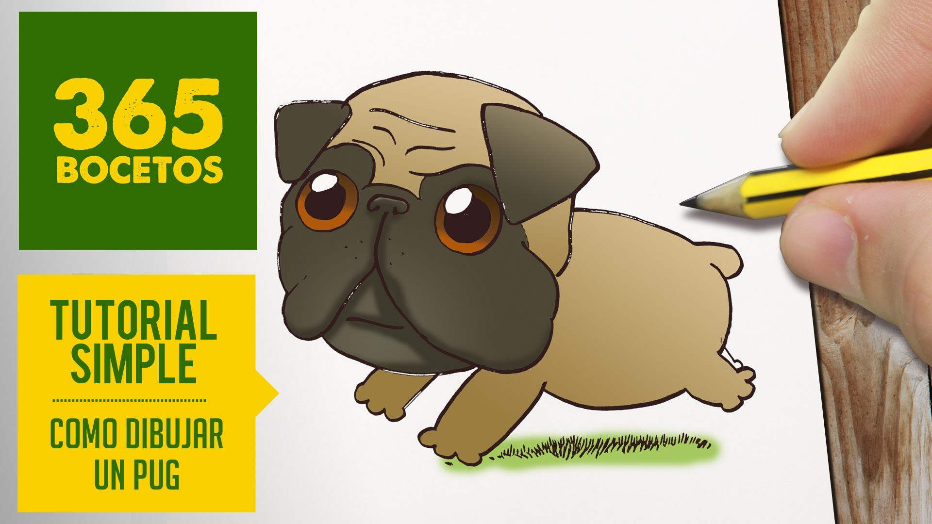 how to draw a simple pug