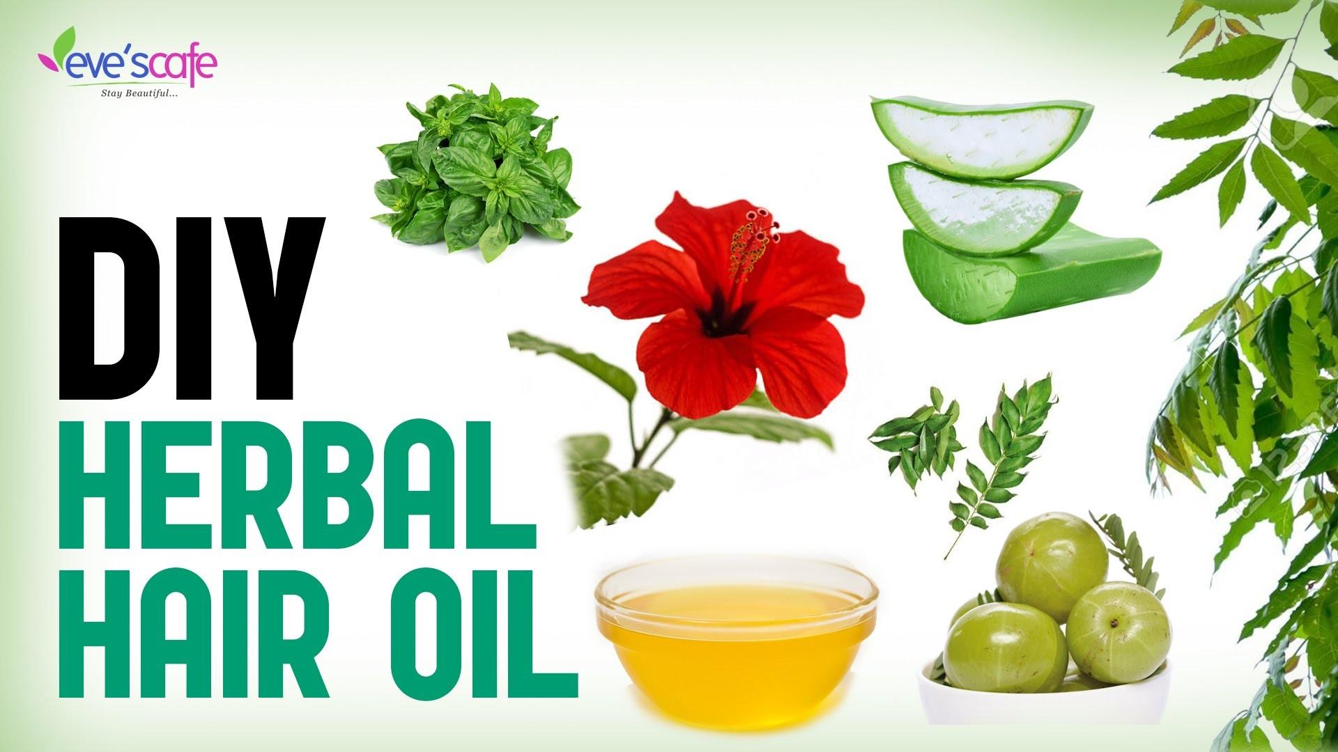 Herbal Hair Oil Preparation For Hair Growth and Stop Hair Loss - DIY