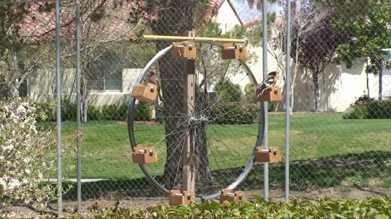 Ferris Wheel Bird Feeder