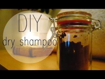 DIY Dry Shampoo for your hair colour