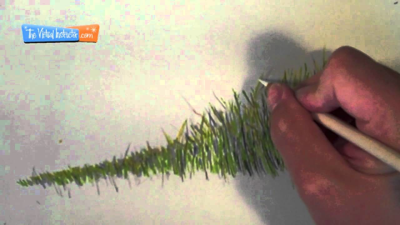 How to Draw Grass - Colored Pencils