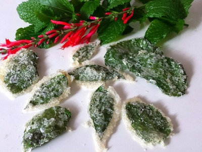 How to Make Candied Mint Leaves! Easy & Fun to do with Kids!