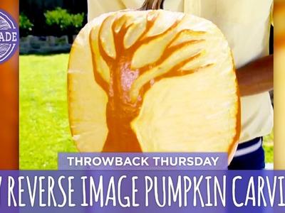 DIY Reverse Image Pumpkin Carving - Throwback Thursday - HGTV Handmade