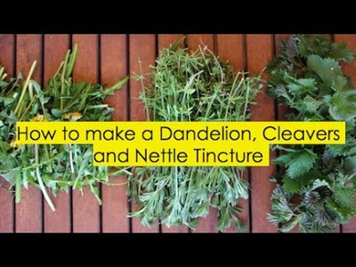 How to make a Herbal Tincture with Dandelion, Cleavers and Nettle Part 1