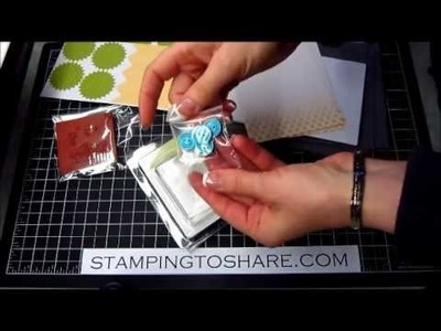 My Paper Pumpkin Kits Revealed