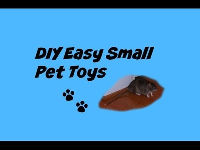 DIY Easy Small Pet Toys(Rodents)