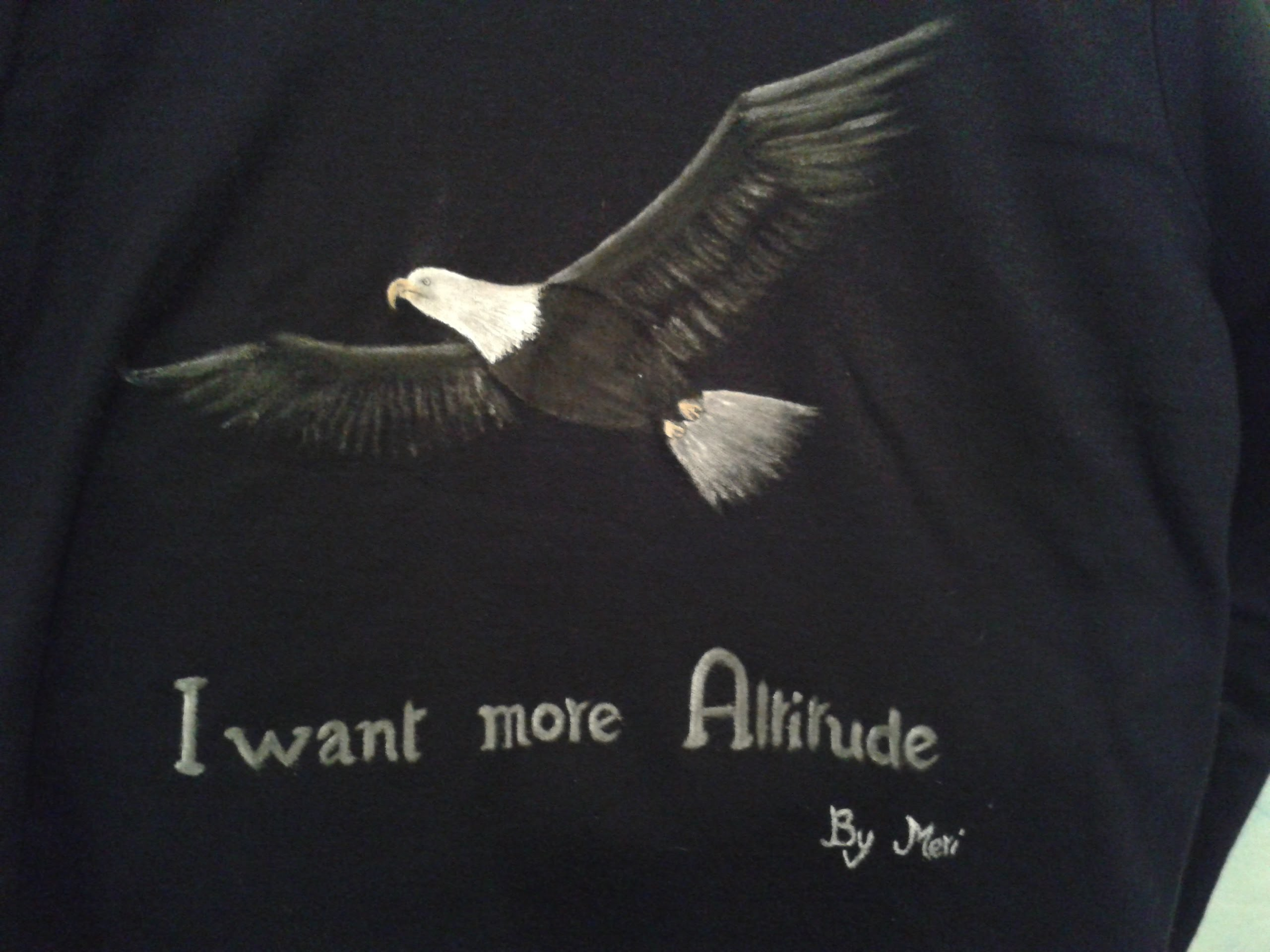 DIY Painting an Eagle on Sweaters or T shirts