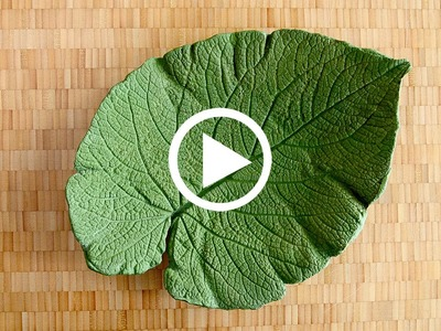ShapeCrete :: Decorative Leaf