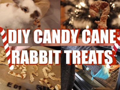 DIY Christmas Rabbit Treats
