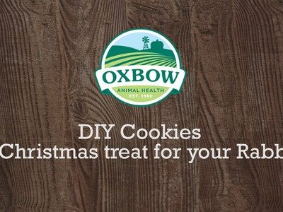 DIY Cookies! (For rabbits)