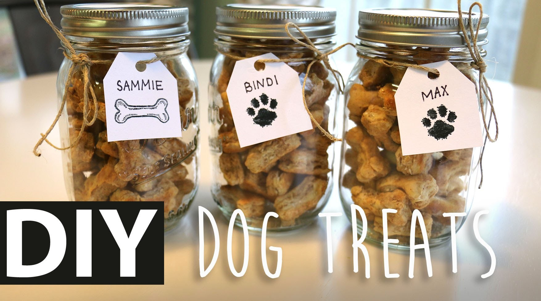 DIY Homemade Peanut Butter Dog Treats