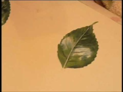 Helen's botanical painting tips 3