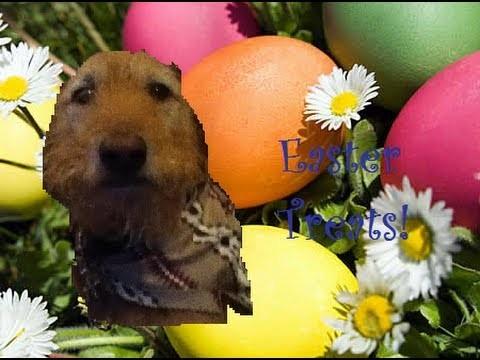 DIY Cheap Easter Treats!