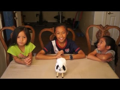 DIY How to make a cottonball sheep project for kids