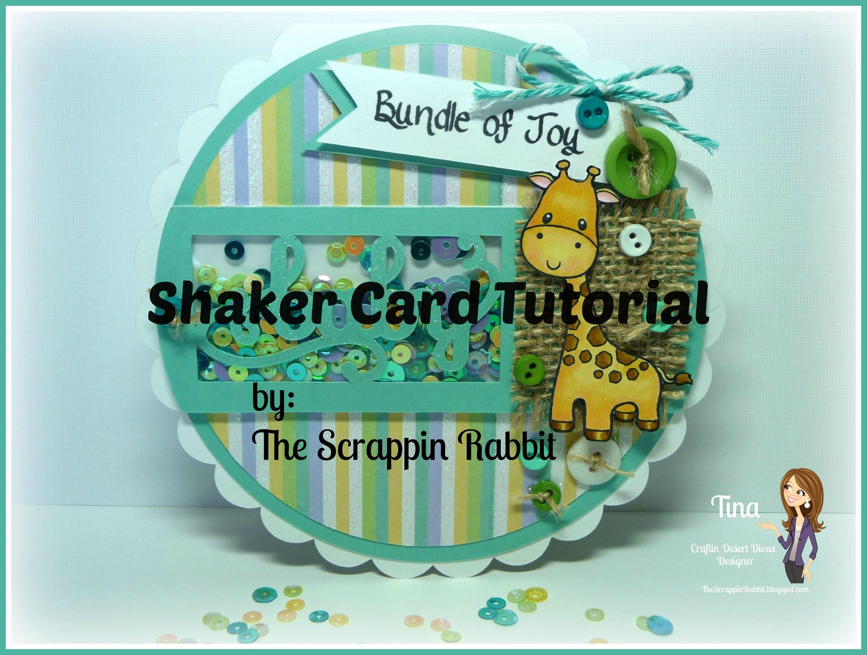 Baby Shower Shaker Card Tutorial