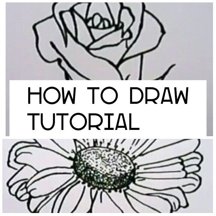 TUTORIAL How to draw flower and rose| AnnaKokii