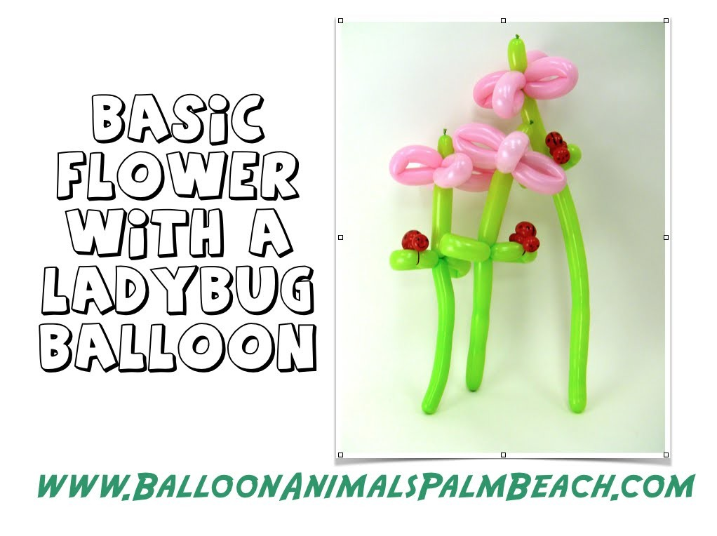 How To Make A Balloon Flower With A Ladybug - Balloon Animals Palm Beach