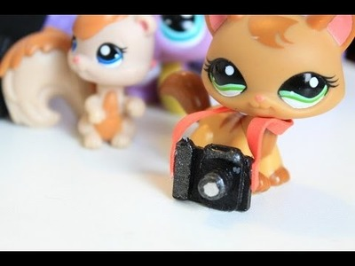 LPS - DIY camera and camera bag | How to make an LPS camera