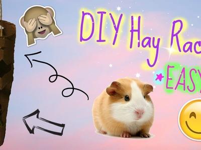DIY  Guinea Pig Hay Rack Tutorial *EASY* | PiggyPalace