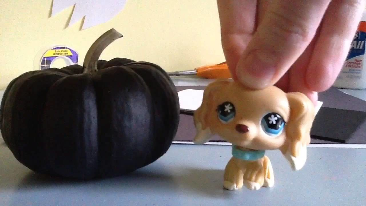 Lps pumpkin DIY with Angie