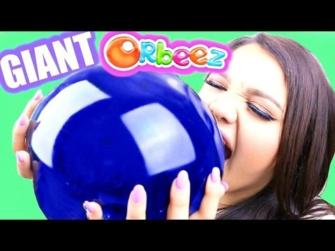 World's Biggest Edible Orbeez! DIY Giant Gummy Orbeez!